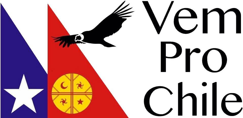 www.vemprochile.com
